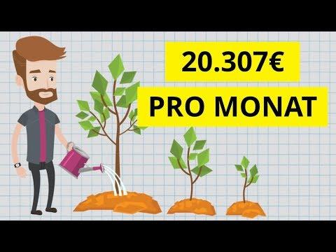 Wie Ich 7 Einkommensquellen Aufgebaut Habe Mit über 20.307€ Pro Monat