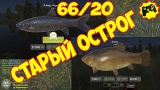 Русская Рыбалка 4 ТРОФЕЙНЫЙ ЛИНЬ и ЧЁРНЫЙ АМУР старый острог