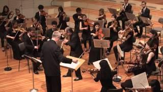 Richard Strauss: Concerto for Oboe in D Major / Washington Barella