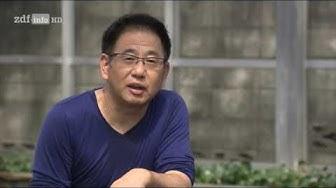 [Doku] Juwelen im Karpfenteich - Die Welt der japanischen Koi [HD]