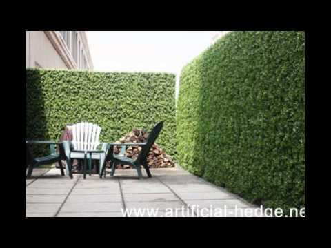 Artificial Privacy Hedge, Best Artificial Hedge for privacy protection