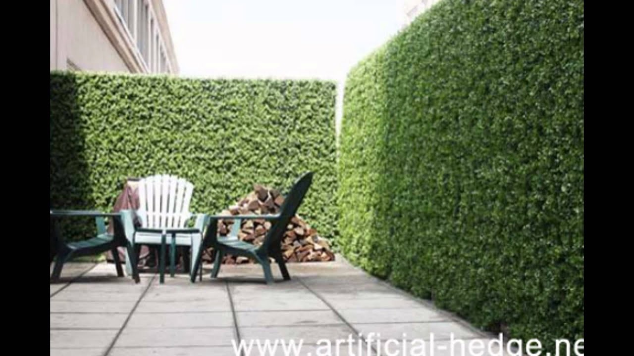 Artificial Privacy Hedge Best Artificial Hedge For
