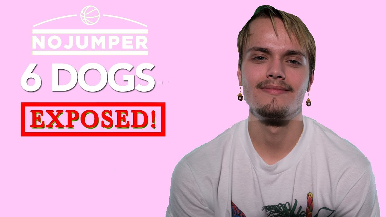 6-dogs-exposed