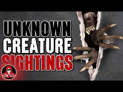 5 CREEPY Unknown Creature Sightings