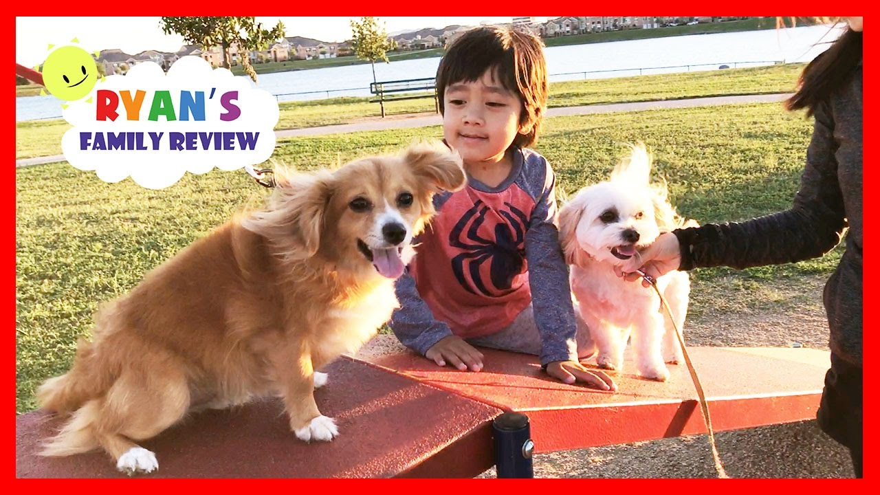 Kids Fun Playtime At Playground And Dog Park With Ryans Family Review