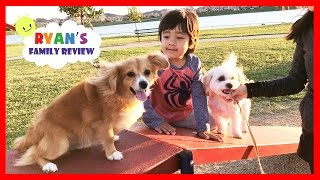 Kids fun playtime at playground and dog park with Ryan's Family Review thumbnail