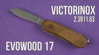 Розпакування Victorinox EvoWood 17 (2.3911.63)