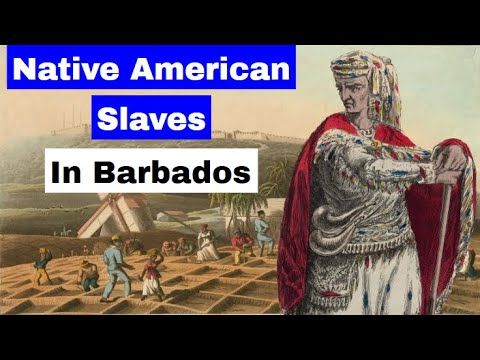 Native American Slaves in Barbados