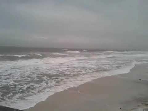Tropical Storm Debbie at the Sandpiper Beach Pelican Bay ...