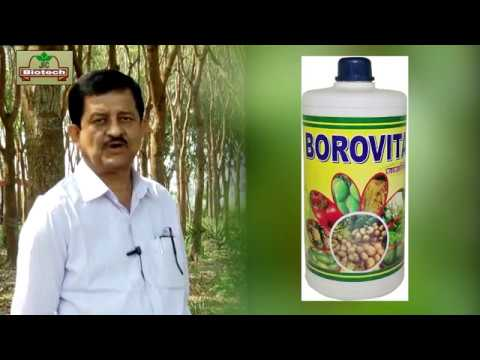 Organic Bio Vitamin BOROVITA for healthy crops