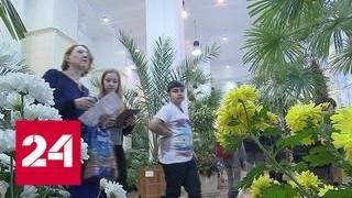 Зимой здесь распускаются цветы: оранжереи парка 'Царицыно' зовут окунуться в лето - Россия 24