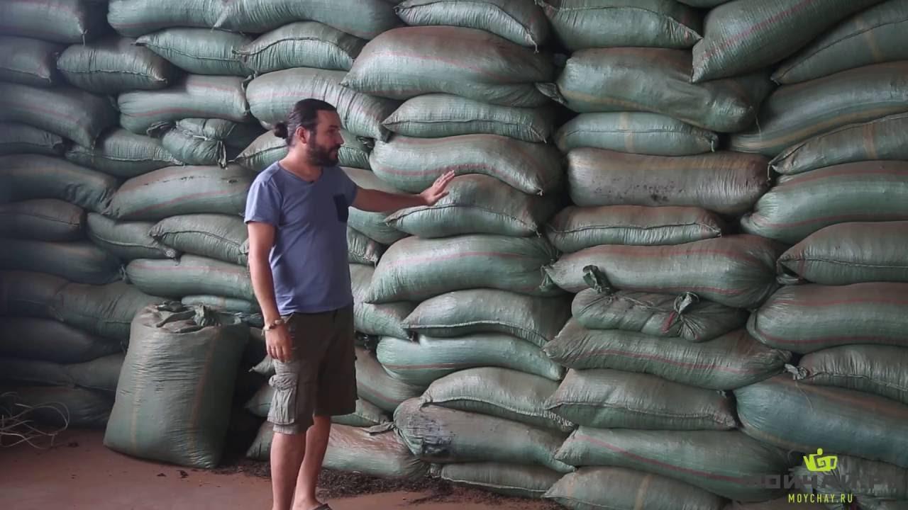 Китай. Огромный завод чая пуэр в уезде Мэнхай China Yunnan One of the biggest puer tea factories
