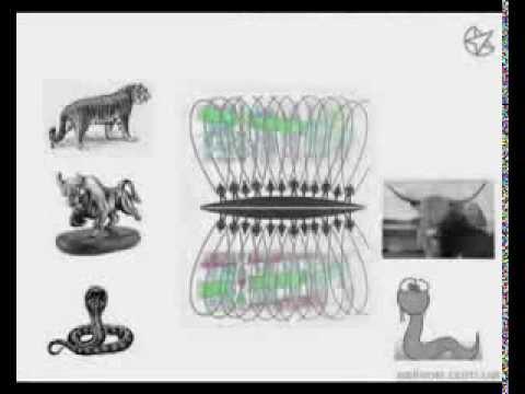 Обучение форекс Свинги Ганна урок