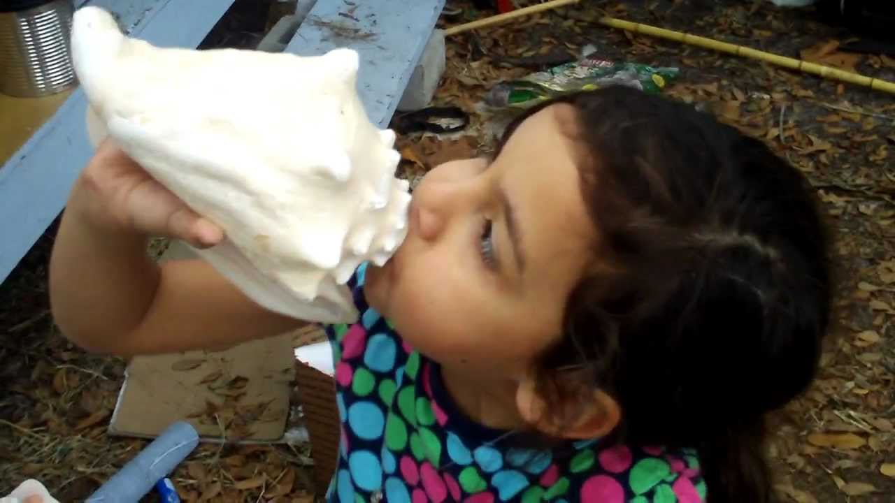 conch shell horns | How to Blow a Conch Shell Horn | How to Make a ...