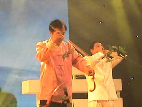 Yuanqing Li Musical saw with Whistle in Shenzhen Grand Theater.
