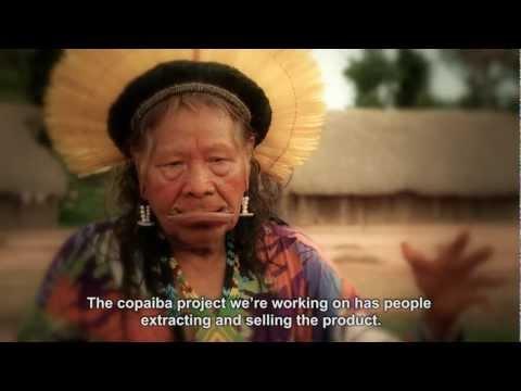 Kayapo Fund -