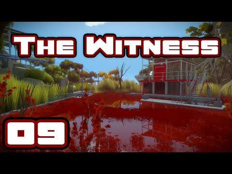 Look Around You - Let's Play The Witness - Gameplay Part 9