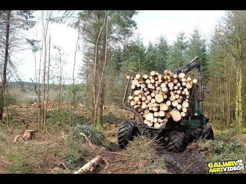 Gunning Harvesting LTD
