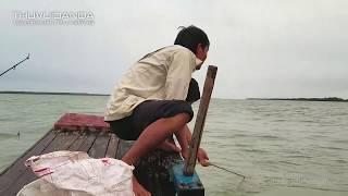 Đi Câu Đêm ở Cửa Biển Móm Nặng l Vừa Câu Vừa Lai Rai