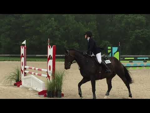 Elena Mihaly - Ox Ridge June Horse Show, 2nd Place Low Childrens Classic