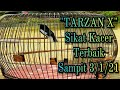 Tarzan X  Cetak Hattrick Di Karantina Sampit     Mp3 - Mp4 Download