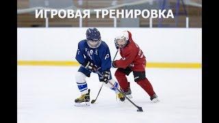 Игровая тренировка для юных хоккеистов