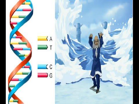 Bending & Genetics: How it SHOULD work