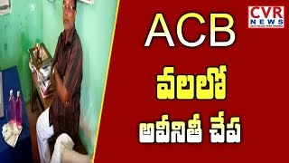 Sompeta VRO Raju Caught Red handed to ACB While Taking Bribe | Srikakulam | CVR News