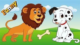 Lustige Hunde, Cartoons für Kinder Full Episodes 2017 – Hunde Video Compilation 2017