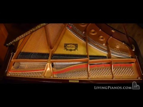 Like New Yamaha C2 Grand Piano for Sale - Online Piano Store - Living Pianos