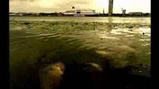 Celulozes klips(, 2011-02-24T11:24:37.000Z)