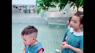 Càn quét vườn xoài của má 3 cùng gia đình Lý Hải Minh Hà