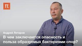 Споры бактерий — Андрей Летаров