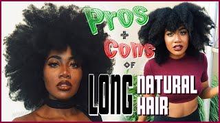 PROS and CONS of Long Natural Hair | EfikZara