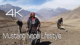MUSTANG NEPAL LIFESTYLE 4K TEST RAW