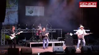 Senior Együttes - Another Brick In The Wall (Pink Floyd cover) (II. Somogyi Borfesztivál)