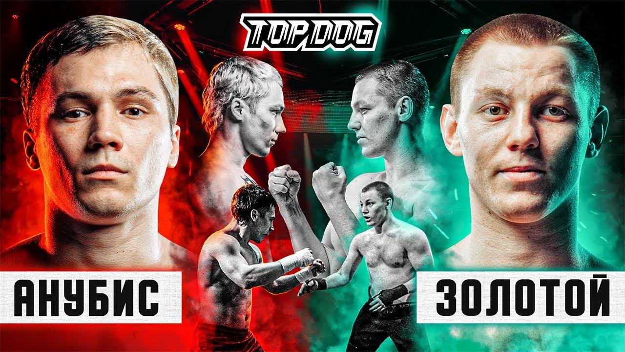 Анубис vs. Золотой | Главный бой вечера | TDFC8