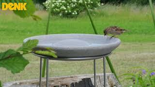 Denk fuglebad i granit video