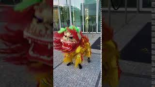 Chinese lion welcome | Kenning Productions