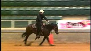 Nathan Morton and Wilde Rooster 2012 SERHA Double Run Futurity