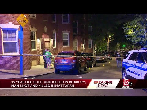 Group of teens viciously attack, rob 15-year-old girl in Brooklyn: Police from YouTube · Duration:  2 minutes 10 seconds