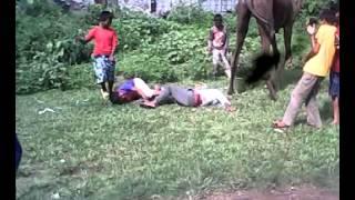 jpt nepali comedy fallen from camel bagaletole