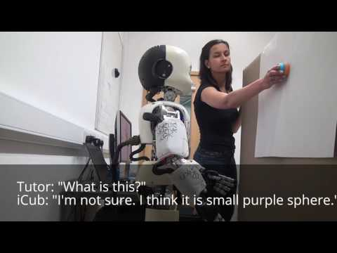 iCub robot - Language acquisition through visual grounding (long)
