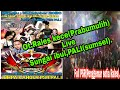 Ot Rales Kece Live Sungai Ibul Pali Jumpa Kangen Psr Pali  Mp3 - Mp4 Download