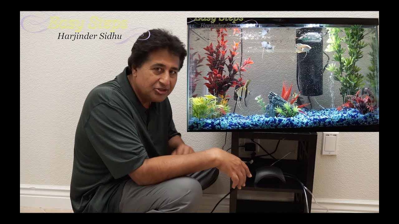 How To Set Up A Small Fish Tank | LED Aquarium Starter Kit ...