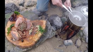 A great day foraging and  wild cooking on a Pembrokeshire beach