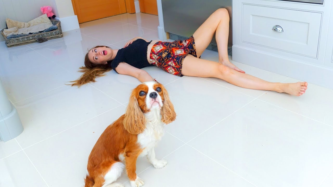 PETS REACT to us FAKING our DEATH!