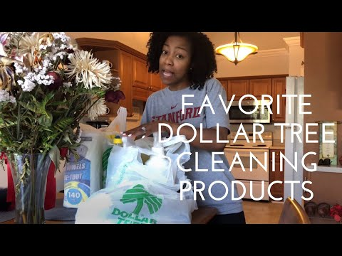 Best Dollar Tree Cleaning Products   Do They Really Work? 👀