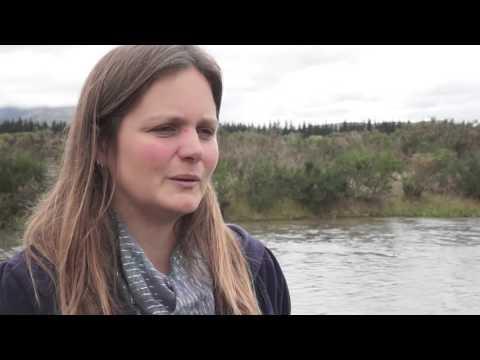 NZ Rivers Under Seige