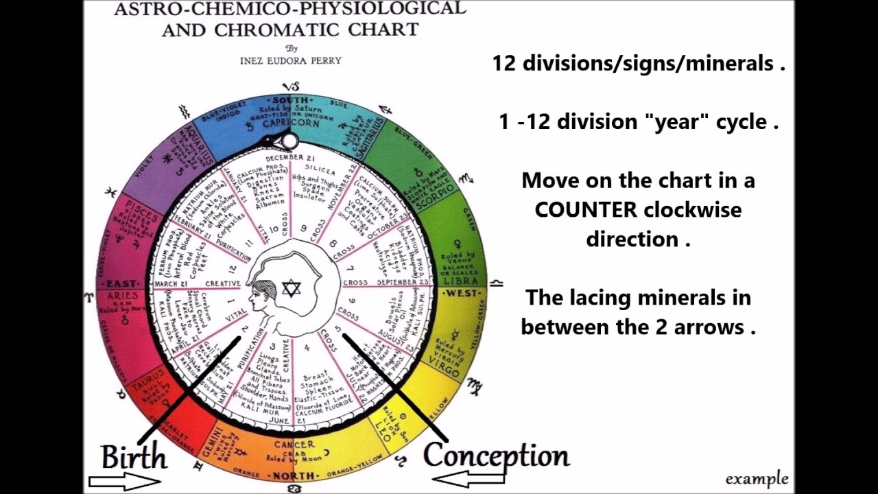 12 Cell Salts Vid 2 Of 3 The Inez Perry Astrological Composition